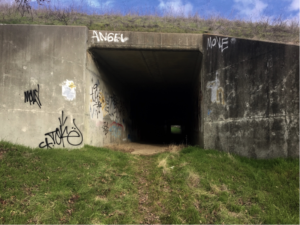 tunnel entrance.lead photo